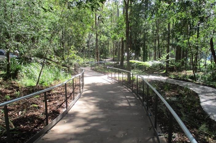 walking tracks at Daisy Hill