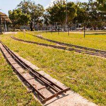 Ewing park train tracks