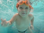 Hollands Swim School small image
