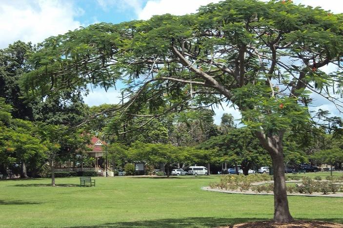 picnic areas new farm park