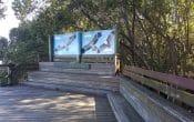 Osprey House Outside Boardwalk