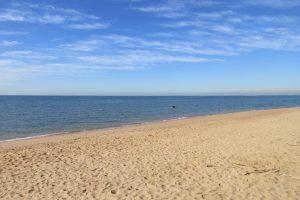 ocean at suttons beach