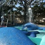 Wynnum Water Park Whales