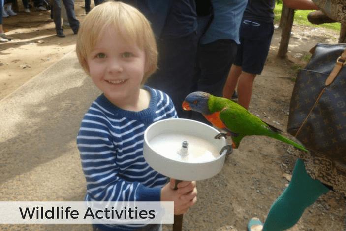 animal fun Brisbane
