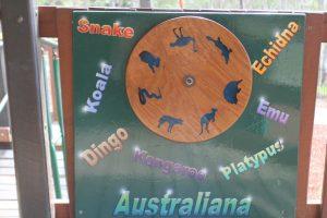 ntive animal spinning wheel