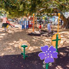 Bulimba Memorial Park playground flowers