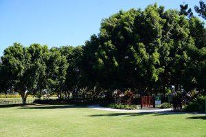 greenspace for picnics at strathpine, brisbane