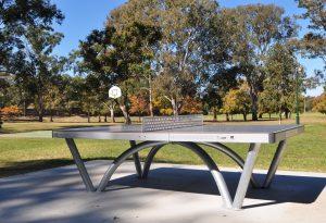 mitchelton table tennis court in park