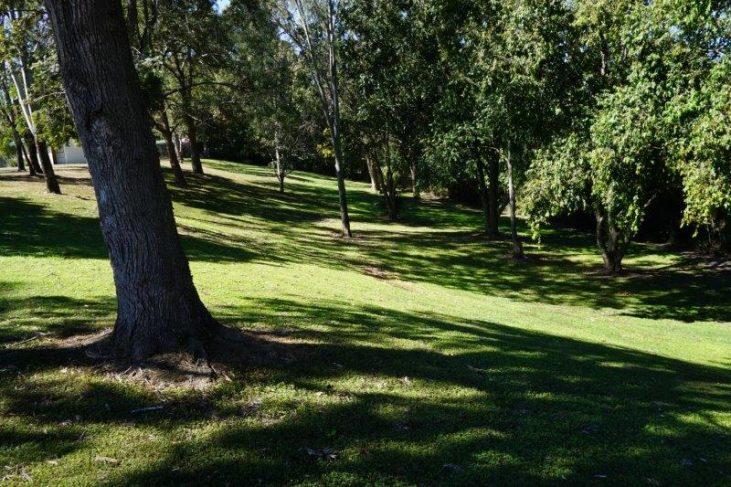 shady spot at melrose park