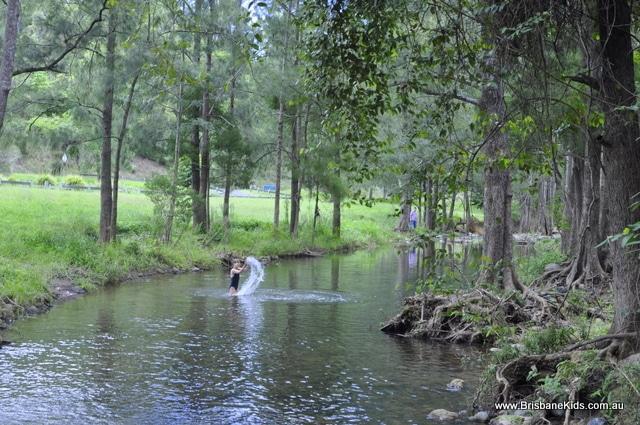 white cedar park and northbrook creek brisbane kids
