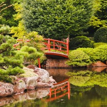 japanese gardens at toowoomba