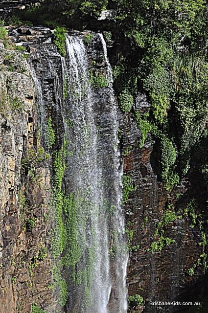 Queen Mary Falls Main Range