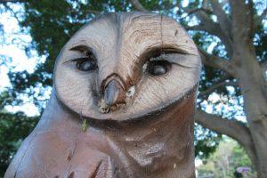 owl sculpture at john oxley reserve
