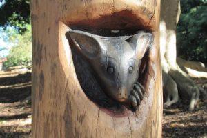 possum sculpture main from wood