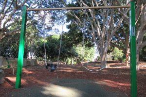 2 swings john oxley reserve