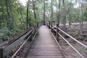 carole green walkway