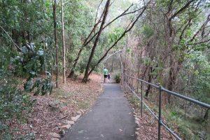 walking trail murrumba downs
