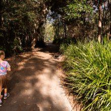 Berrinba wetlands paths