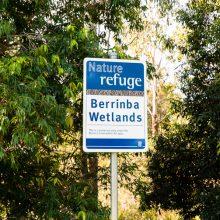 Berrinba wetlands shaded nature refuge