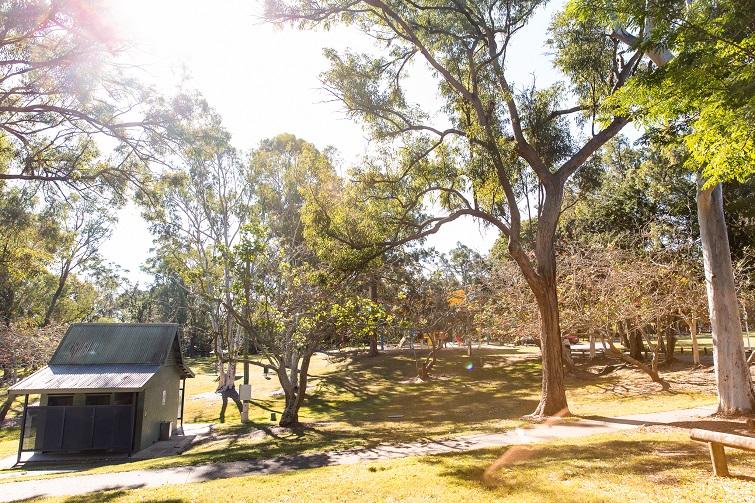 leadfy springwood park