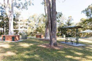 springwood park picnic areas.