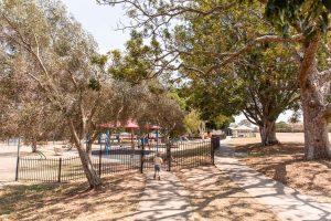 shady svoboda playground