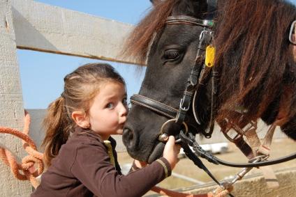horseriding brisbane