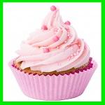 cupcake holiday workshop