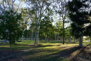shady logan park