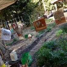 community garden brisbane