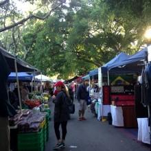 davies park markets