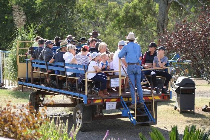 wagon ride at bestbrook