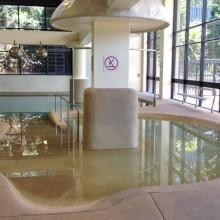 Chandler Pool