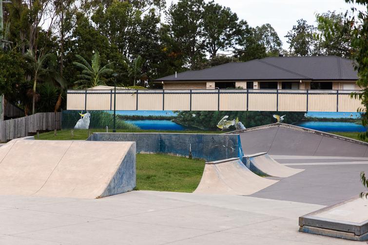shailer pioneer park skate park.