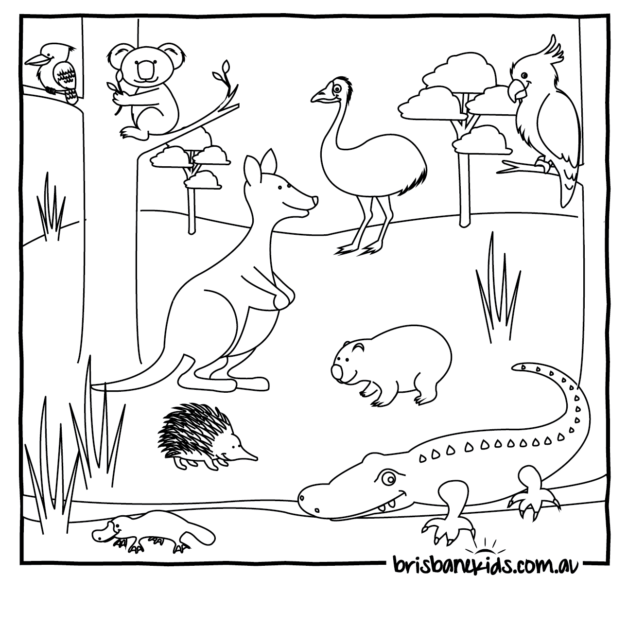 Australian Animals Colouring Pages • Brisbane Kids