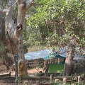 Cooloola camping