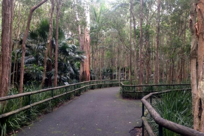 Tropical gardens at Australia Zoo