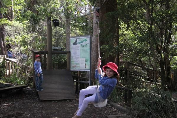 Binna Burra  sc 1 st  Brisbane Kids & Binna Burra u0026 Lamington National Park THE REVIEW u2022 Brisbane Kids