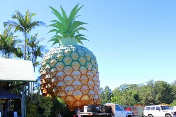 Queensland Zoo at the Big Pineapple