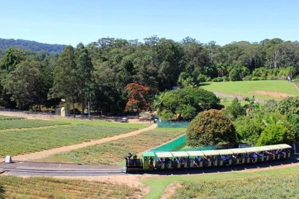 Visiting Queensland Zoo
