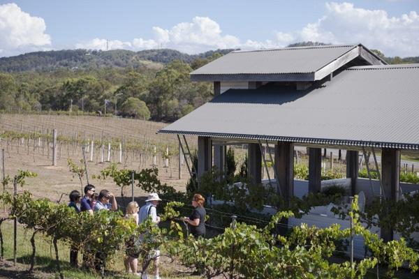 A Family Friendly Winery in Brisbane Sirromet Winery  : sirromet0233 001 from www.brisbanekids.com.au size 600 x 400 jpeg 266kB