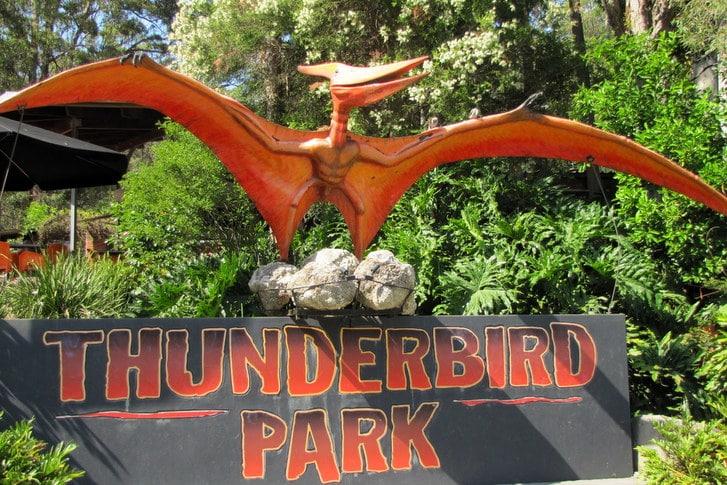 Tamborine Mountain Thunderbird Park