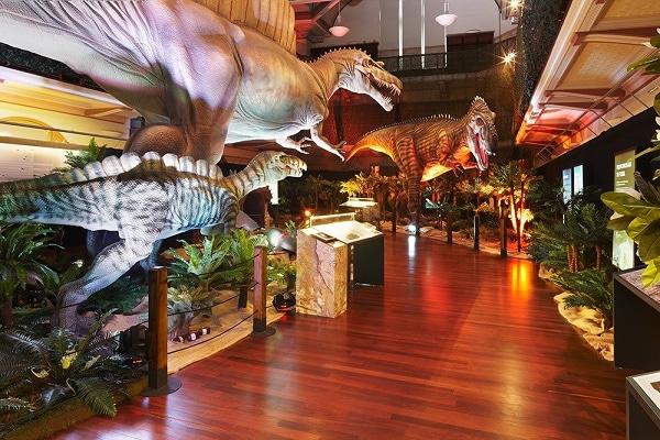 http://www.brisbanekids.com.au/wp-content/uploads/2014/12/Dinosaur-Discovery-22.jpg