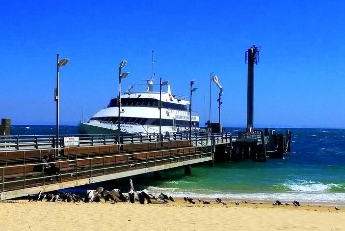 Tangalooma Island Resort ferry
