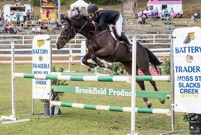 Brookfield Show Equestrian