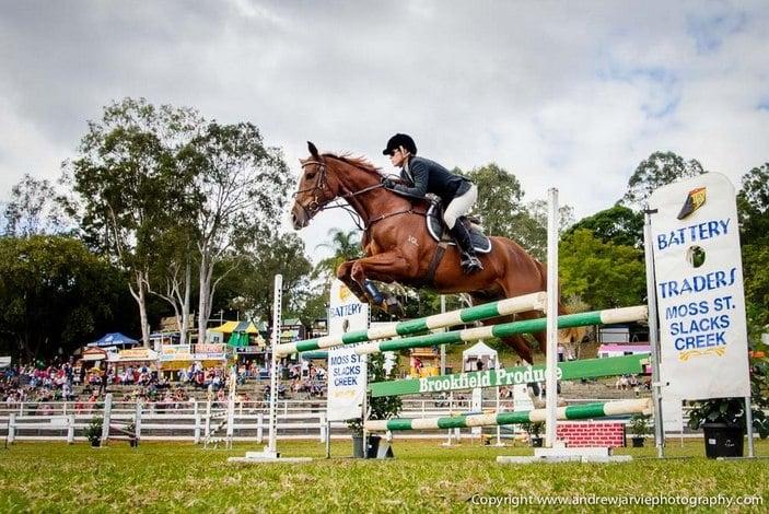 Brookfield Show Horse Jumping