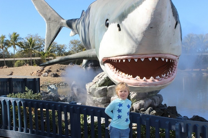 Sharks at Seaworld