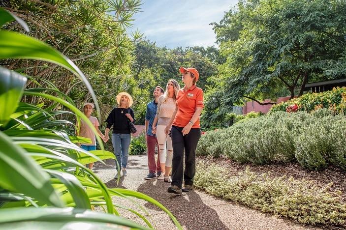 Parks Alive Roma Street Parkland Tour, guided tour, gardens, bush tucker, roma street parkland