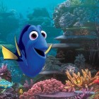 Image courtesy of Finding Dory Facebook Page