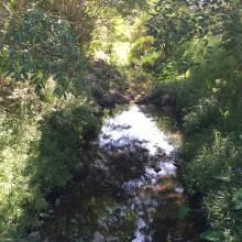 Huxtable Park Chermside